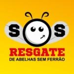 SOS Abelhas sem ferrão no Festival de Agricultura 2016